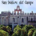 Visita Guiada San Isidoro del Campo