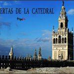 cubiertas catedral sevilla visita guiada
