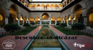 Visita Guiada Alcázar