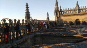 Cubiertas Catedral de Sevilla